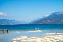 Lago di Garda: divieto di pesca alborella